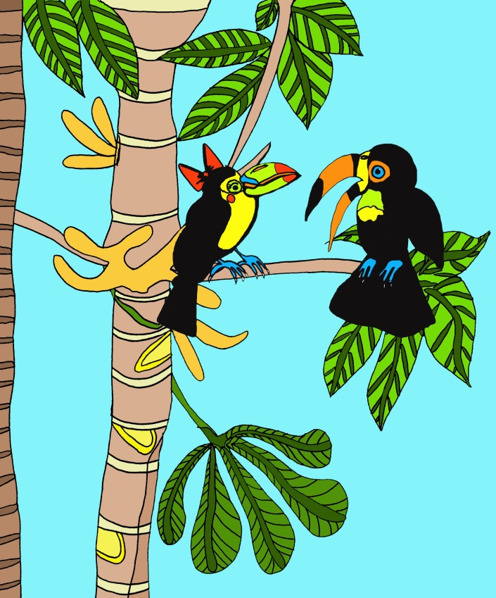 Toucan in tree.jpg
