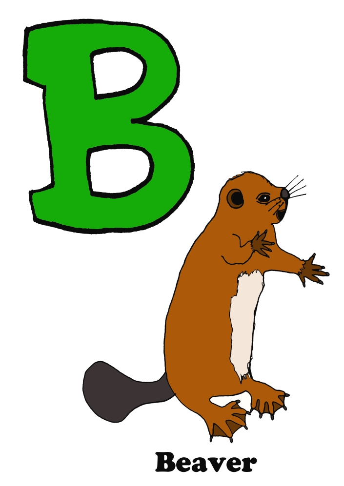 beaver-finished-alphabet