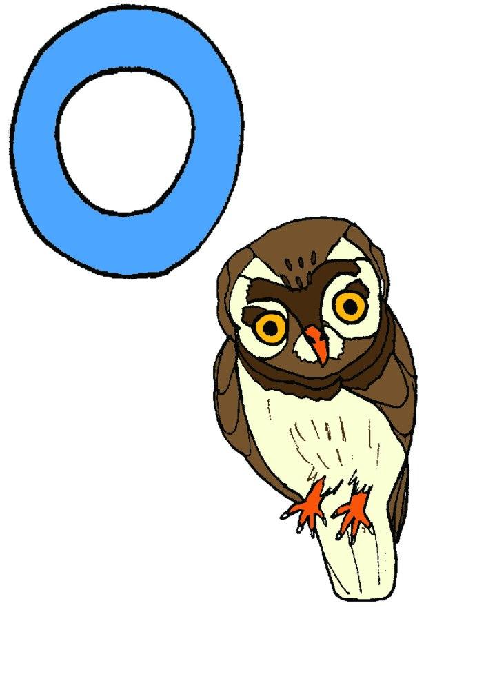 o-for-owl